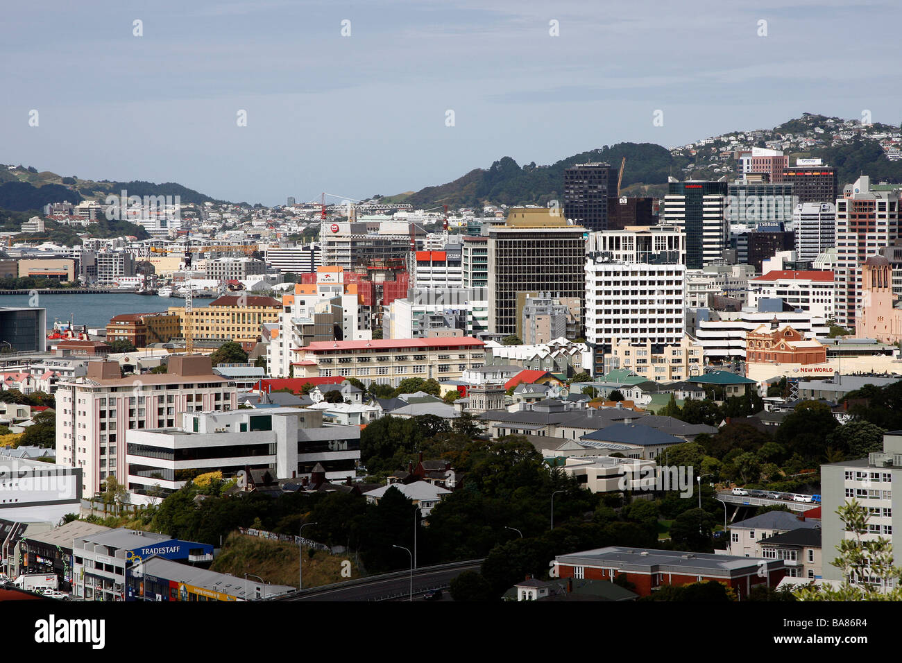 View of the city of Wellington, New Zealand - Stock Image