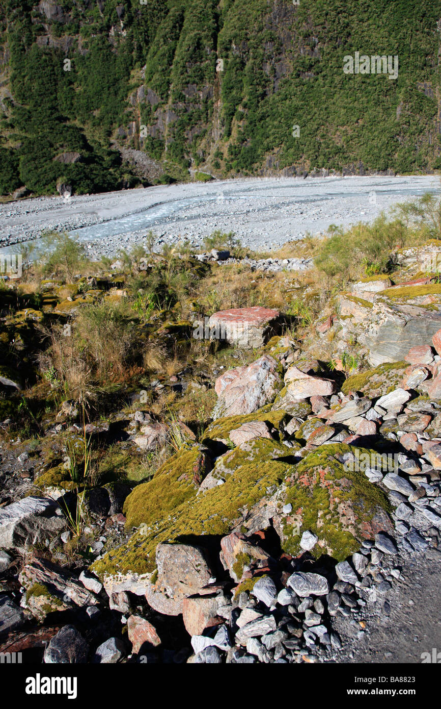 Boulders and rocks in glacial valley Fox river bed, West Coast, South Island, New Zealand Stock Photo