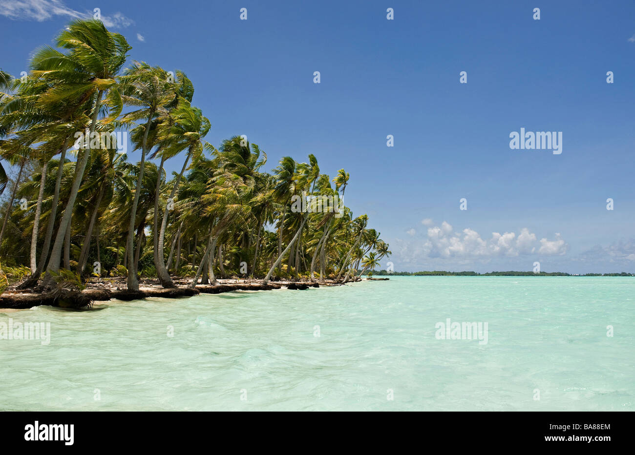 French Polynesia : Bora Bora (island) - Stock Image