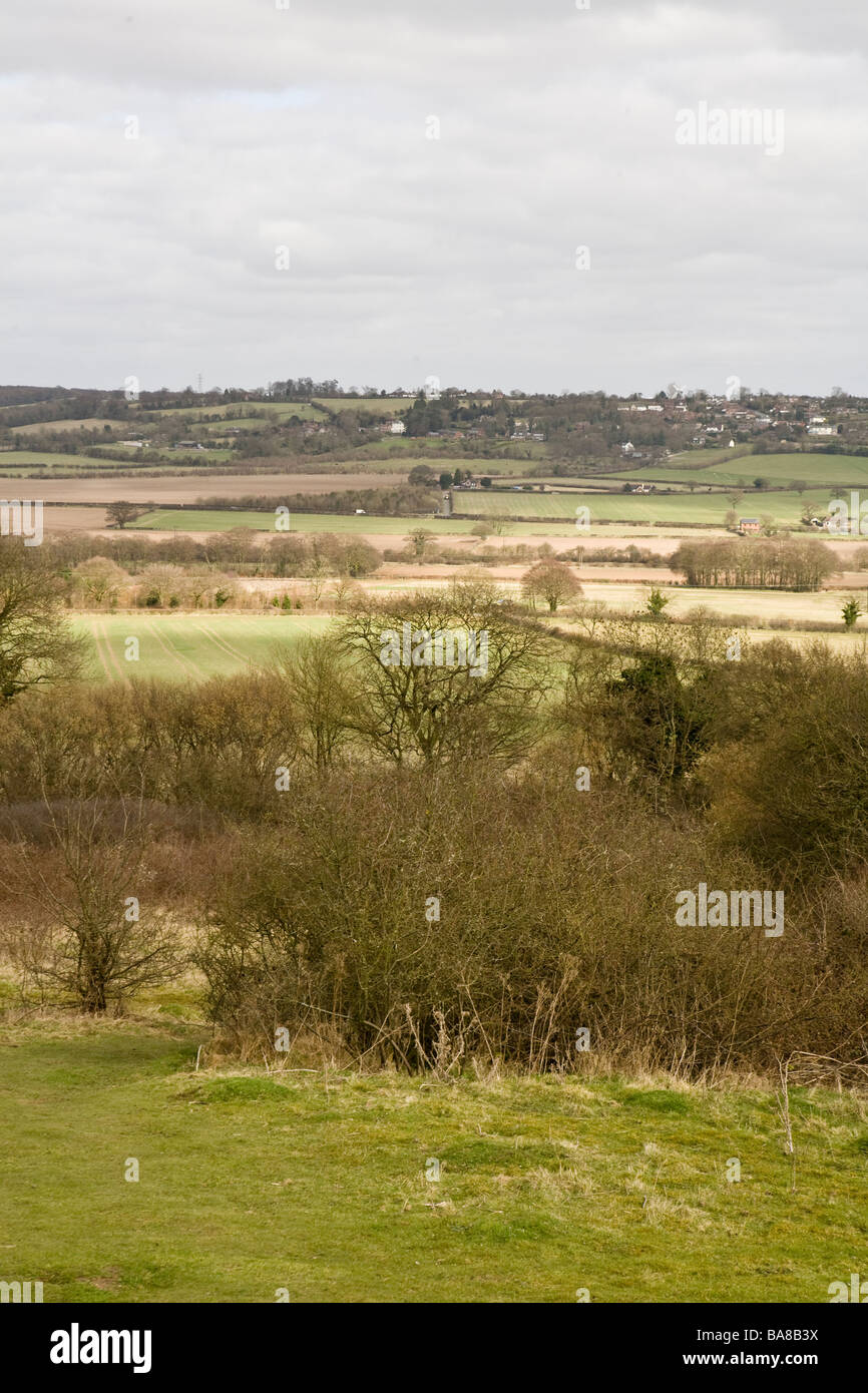 upright view of the english countryside in Buckinghamshire - Stock Image
