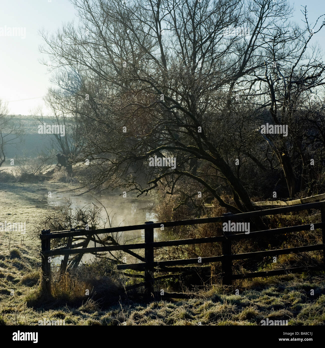 Signet Brook on a frosty morning near Burford - Stock Image