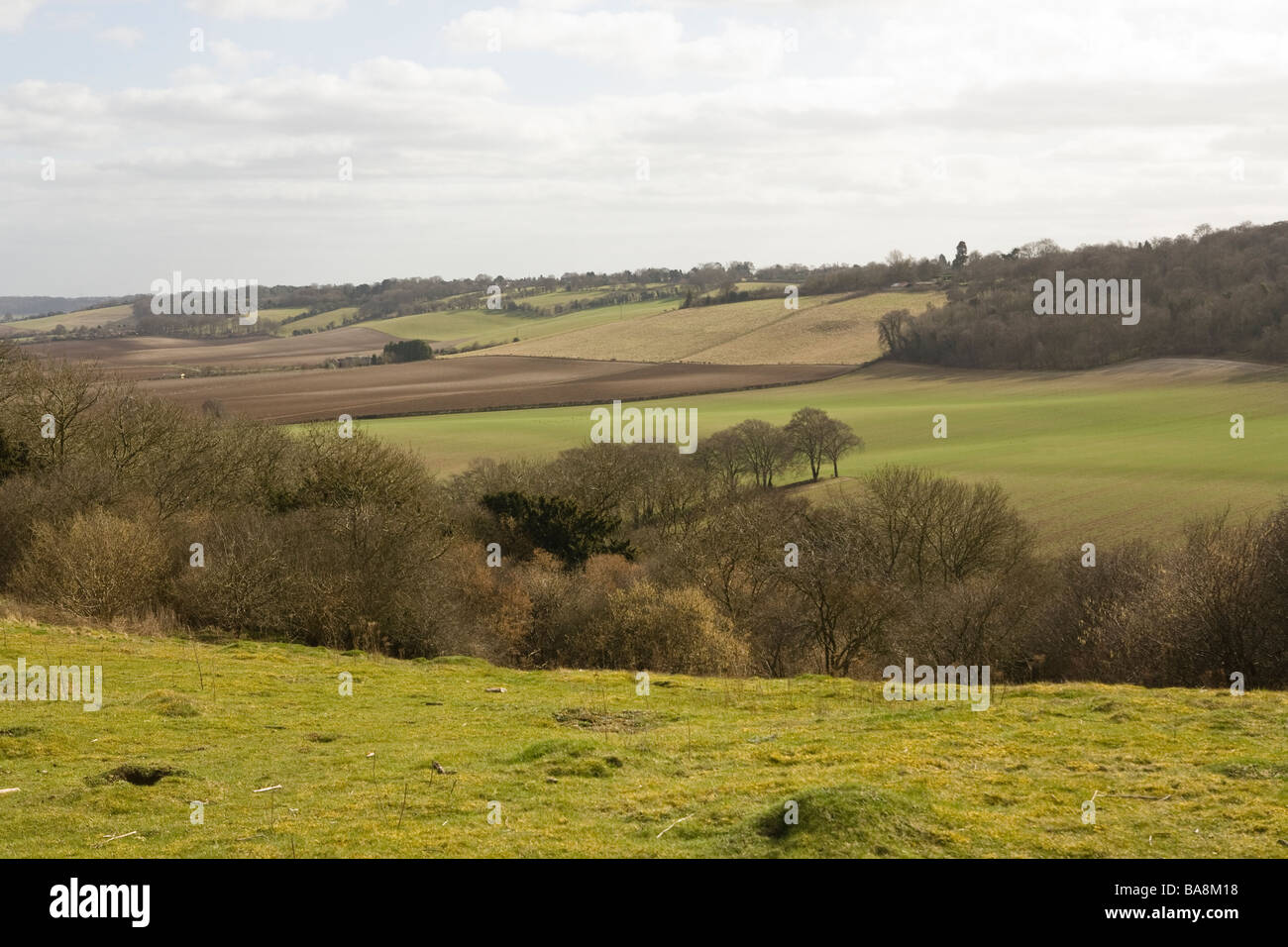 view over the Buckinghamshire countryside - Stock Image