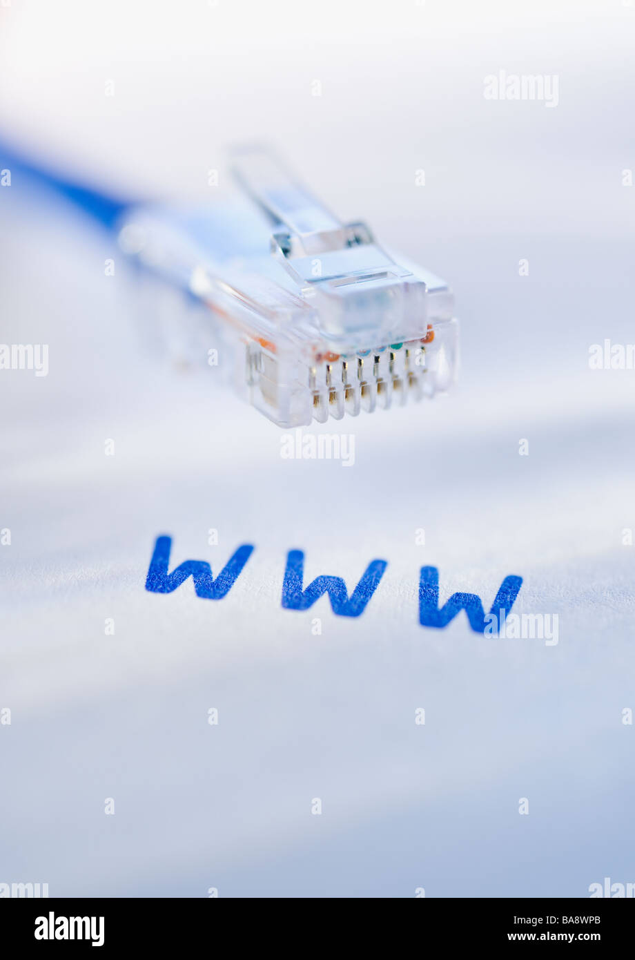 Network cable and world wide web acronym - Stock Image