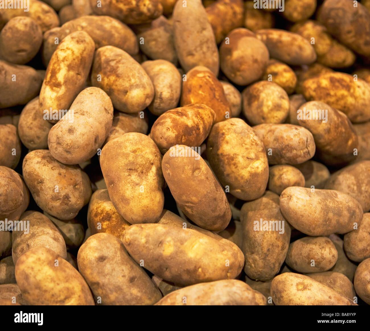 Idaho potatoes at a fruit stand - Stock Image