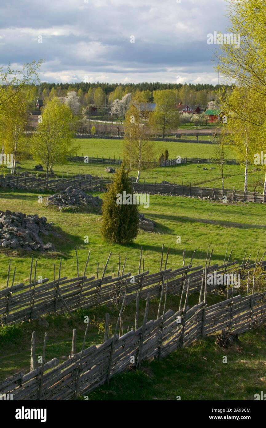 Old fences in pastureland Sweden - Stock Image