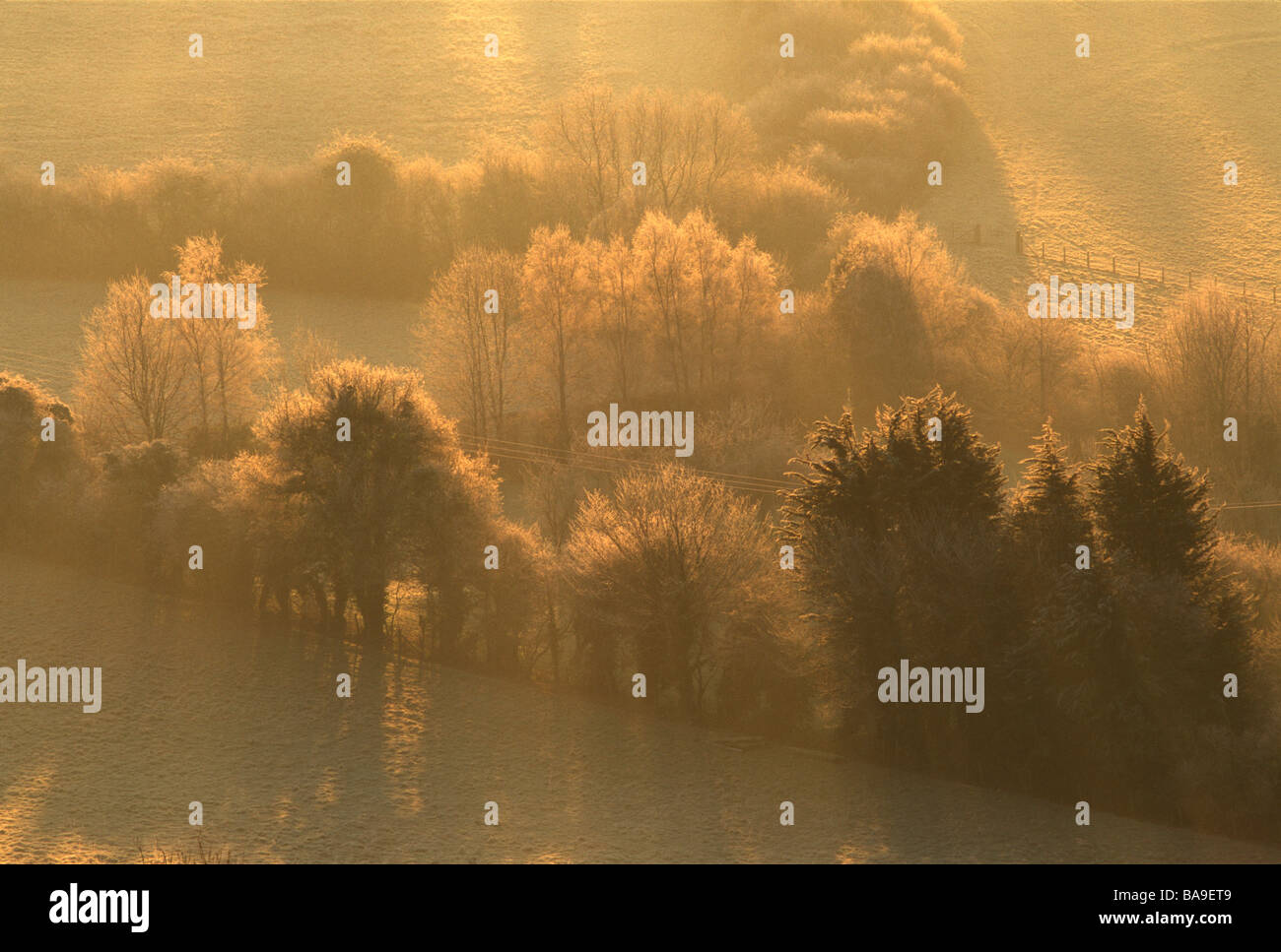Frosty fields at dawn - Stock Image