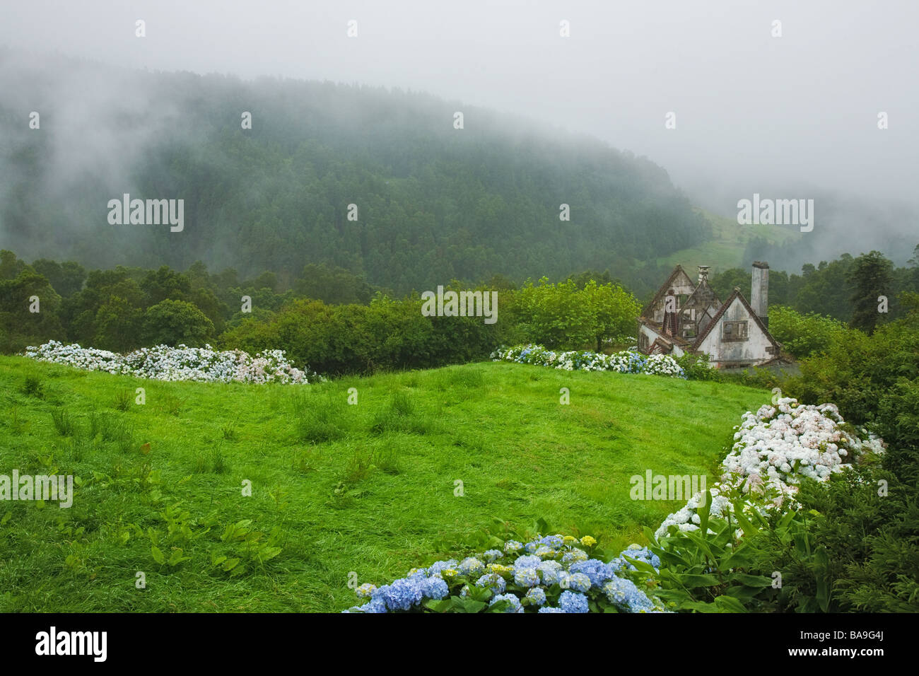 View over old and abandon house with mist on the forest of Sao Miguel island, azores, Portugal - Stock Image