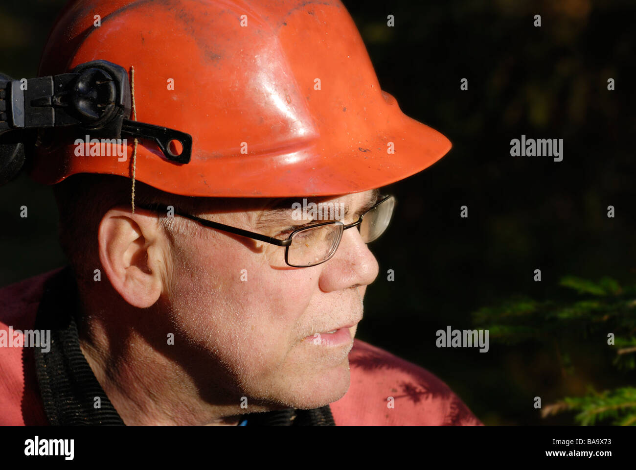 A woodman working in the forest Sweden - Stock Image