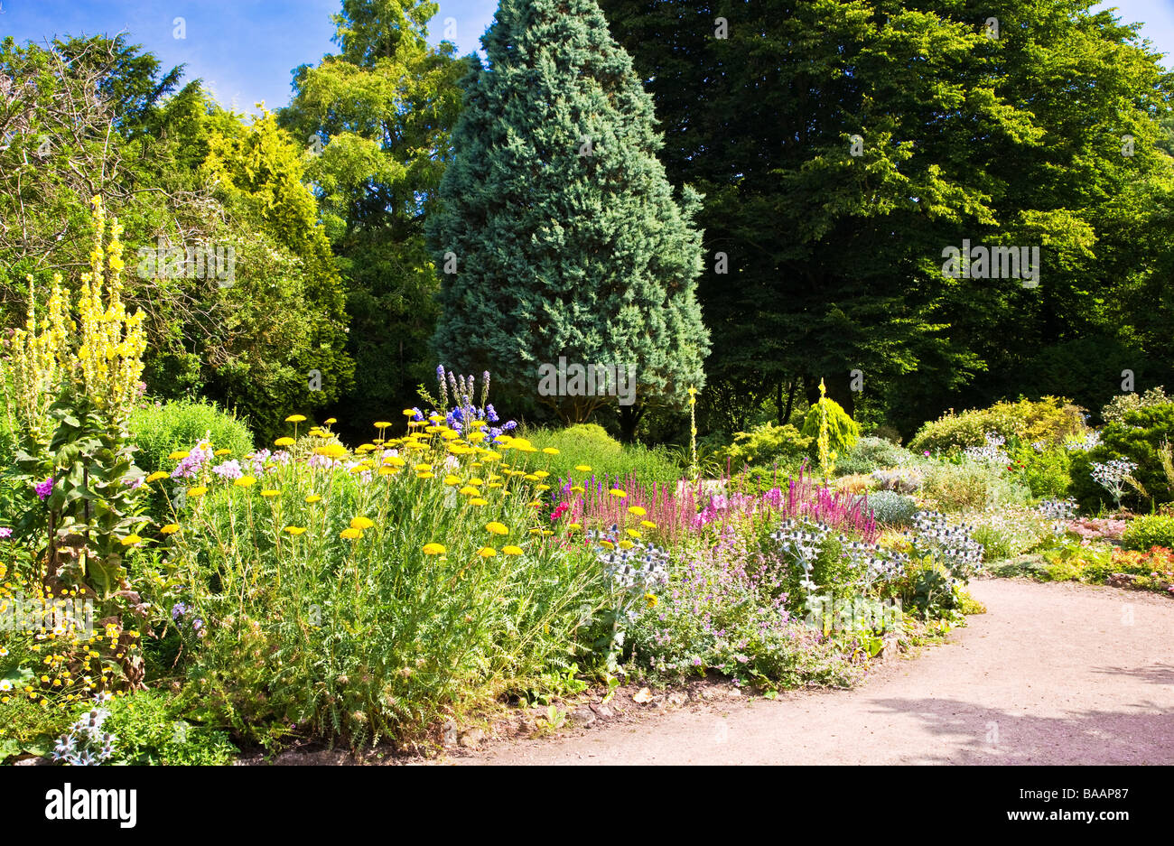 Herbaceous perennial summer border on a sunny day at Waterperry Gardens Wheatley Oxfordshire England UK - Stock Image