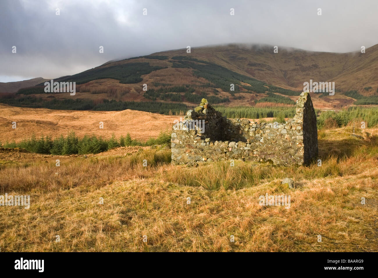 Ruined croft cottage in Glen More Isle of Mull - Stock Image