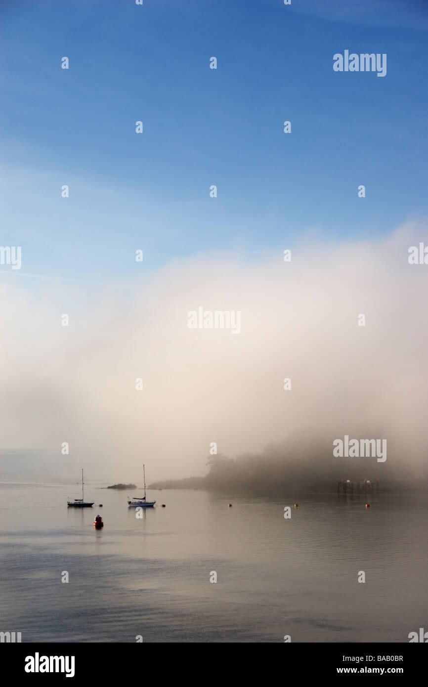 Sailing boats moored at the coast on a foggy morning. Stock Photo