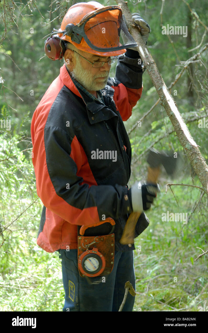 A woodman working Sweden - Stock Image