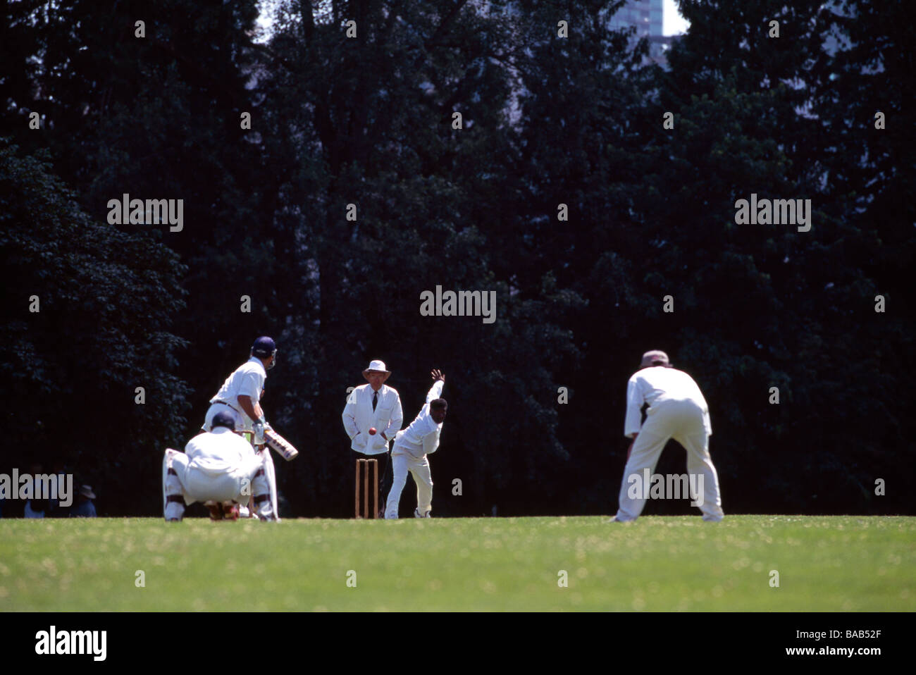 Cricket Bowler delivering Ball to Batsman in Cricket Match on the Stanley Park Pitch Ground in Vancouver British - Stock Image