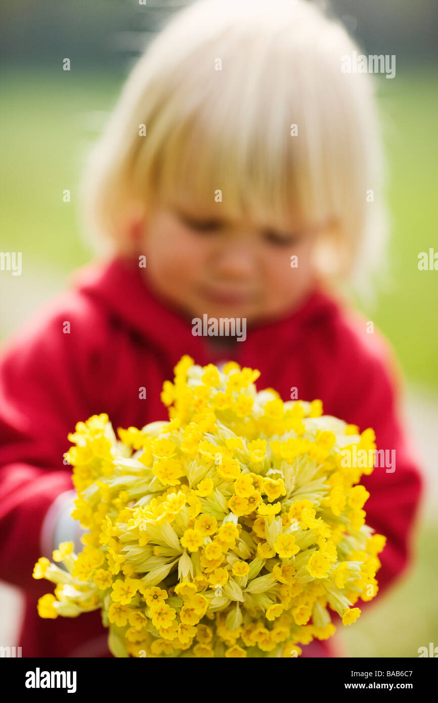 A girl with cowslips, Sweden. - Stock Image