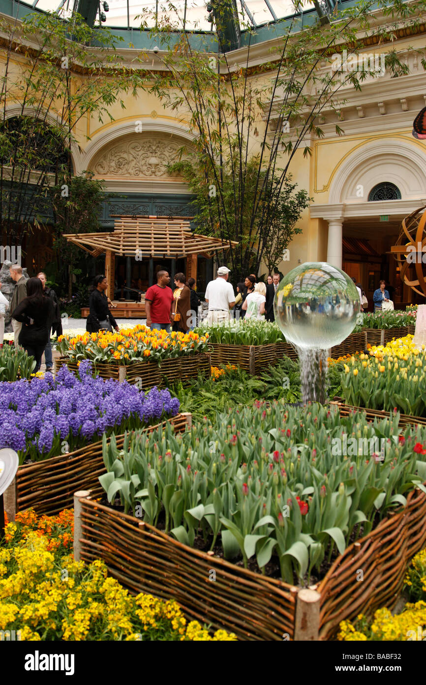 Conservatory And Botanical Gardens Stock Photos & Conservatory And ...