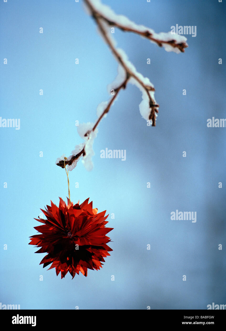 A red Christmas decoration on a snowy branch Sweden - Stock Image