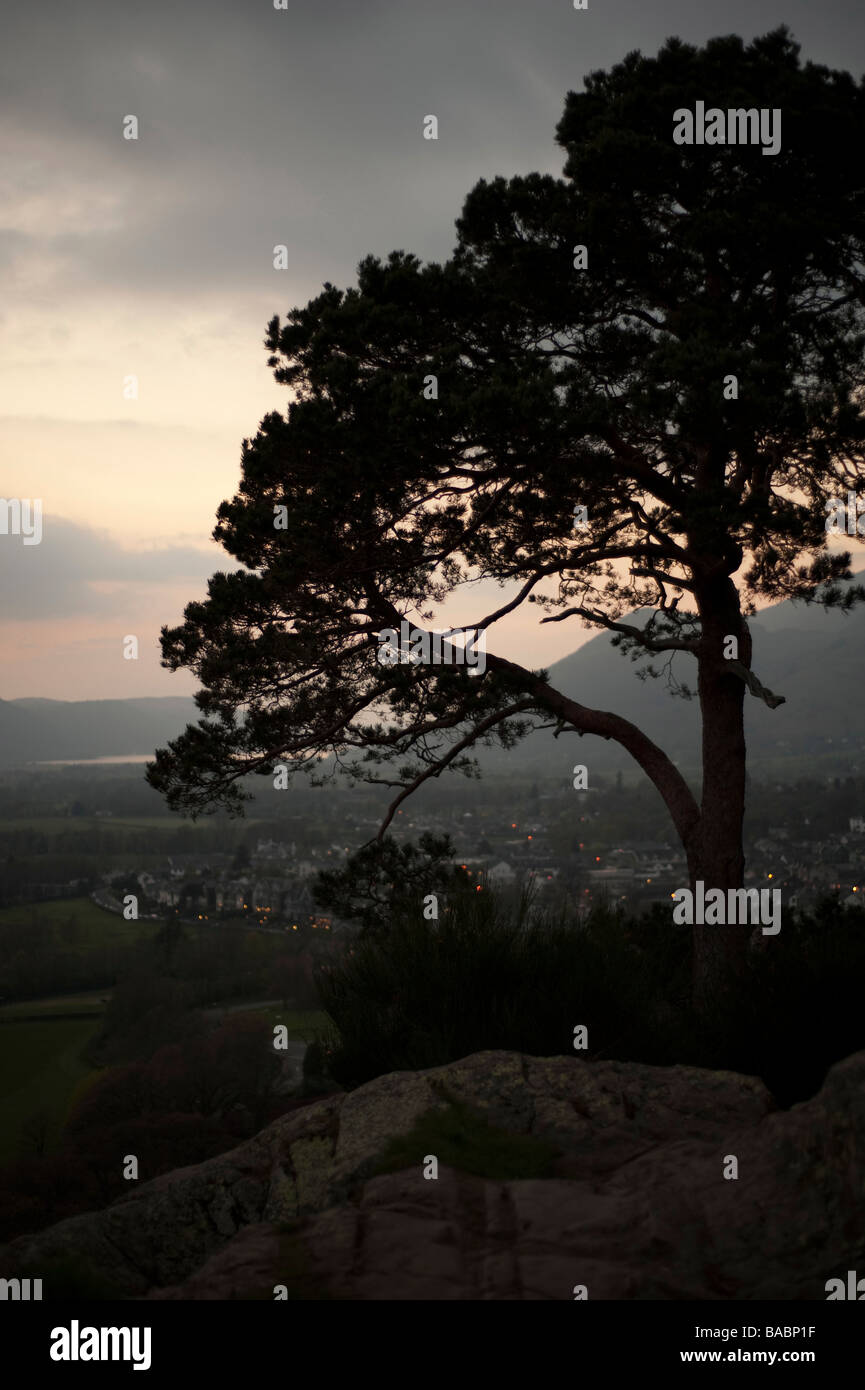 View from Keswick, Lake District, shows sunset and sillouette of a tree - Stock Image