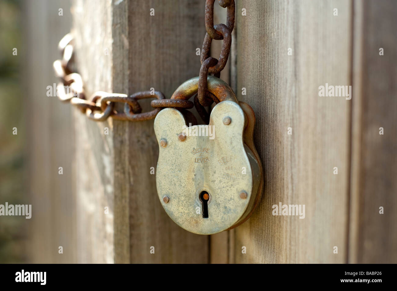 A rusted padlock and chain against a brown door - Stock Image