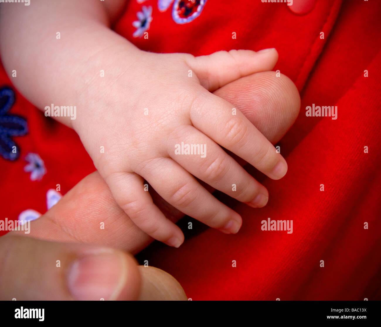 adoption - Stock Image