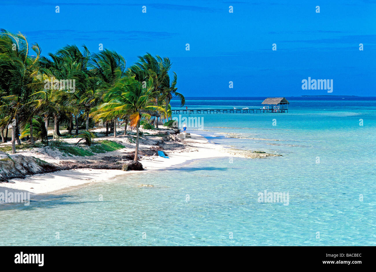 SOL CAYO GUILLERMO $118 ($̶1̶4̶2̶) - Updated 2018 Prices ... |Beach Cayo Guillermo Cuba