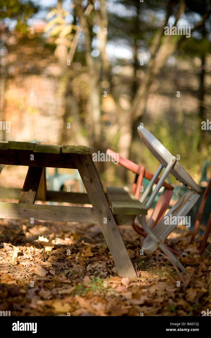 Abandoned furniture in the woods - Stock Image