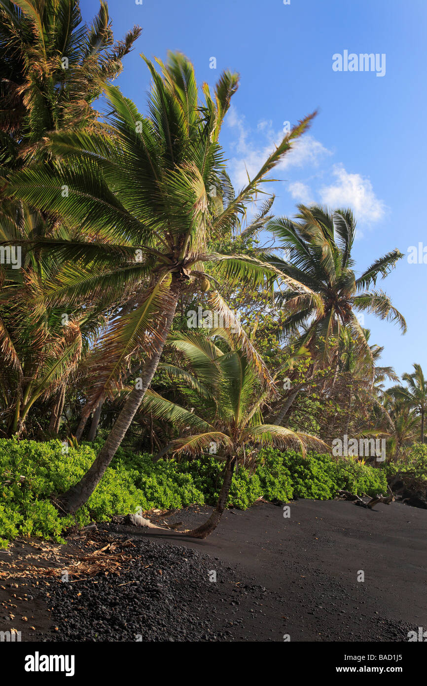 Black sand beach in Hana Bay on the northeast coast of Maui, in the town of Hana. - Stock Image