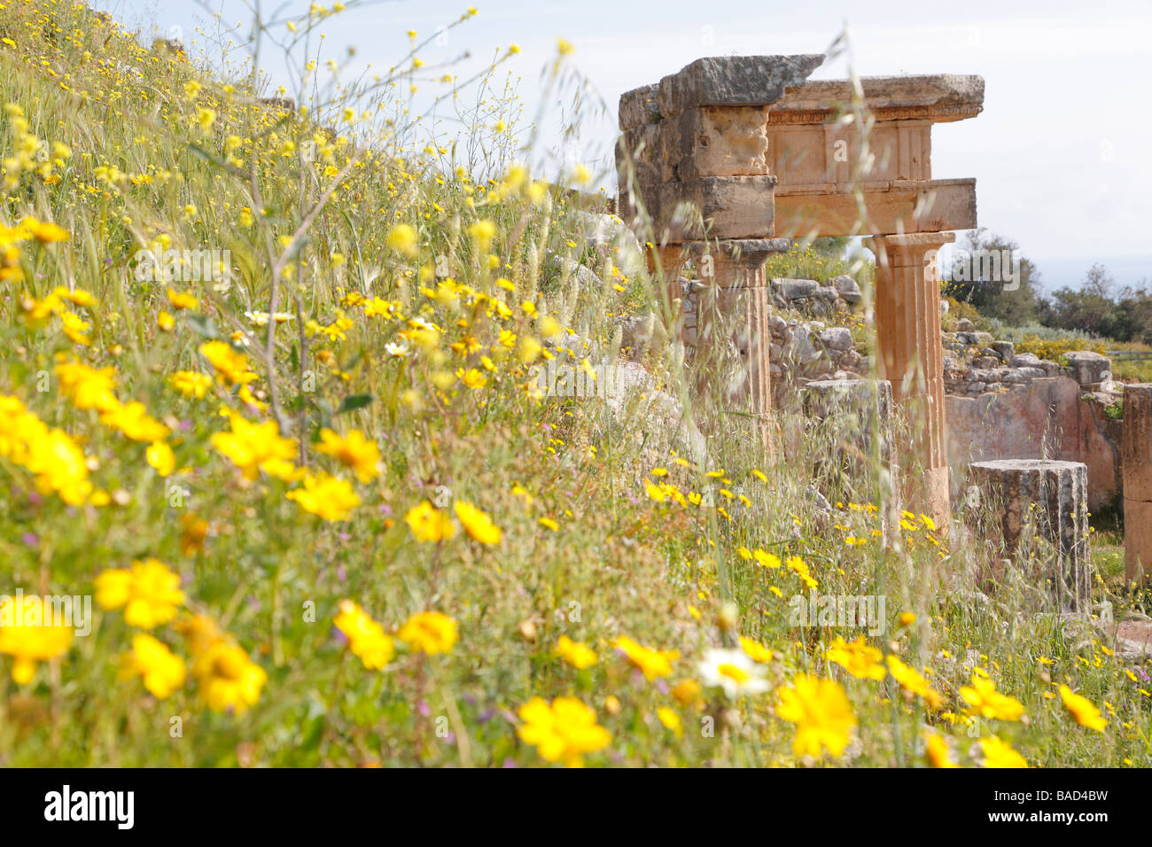 Remains of Hellenistic-Roman town of Solunto, Palermo area, Sicily, Italy - Stock Image