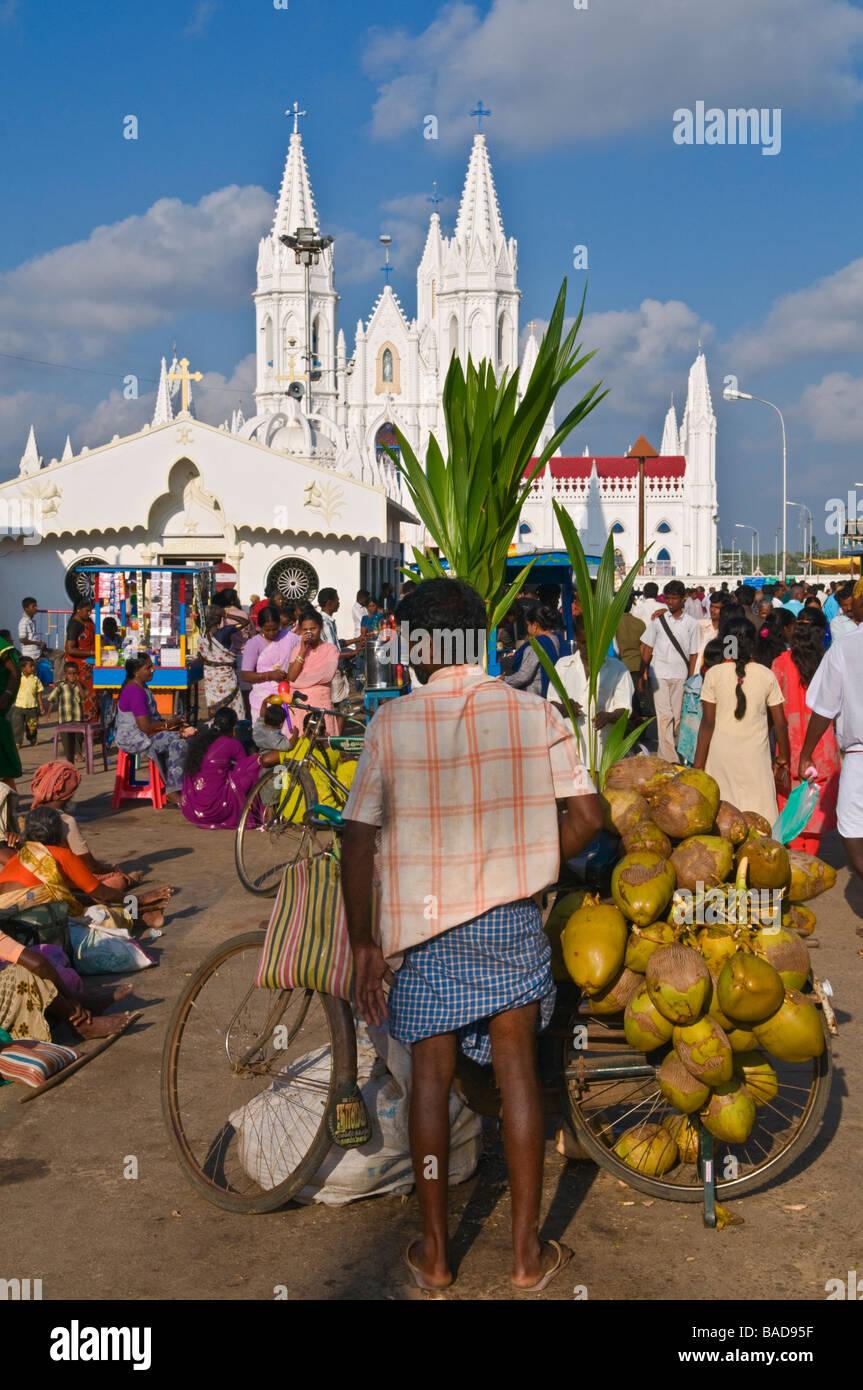 Coconut seller Velankanni Tamil Nadu India Stock Photo