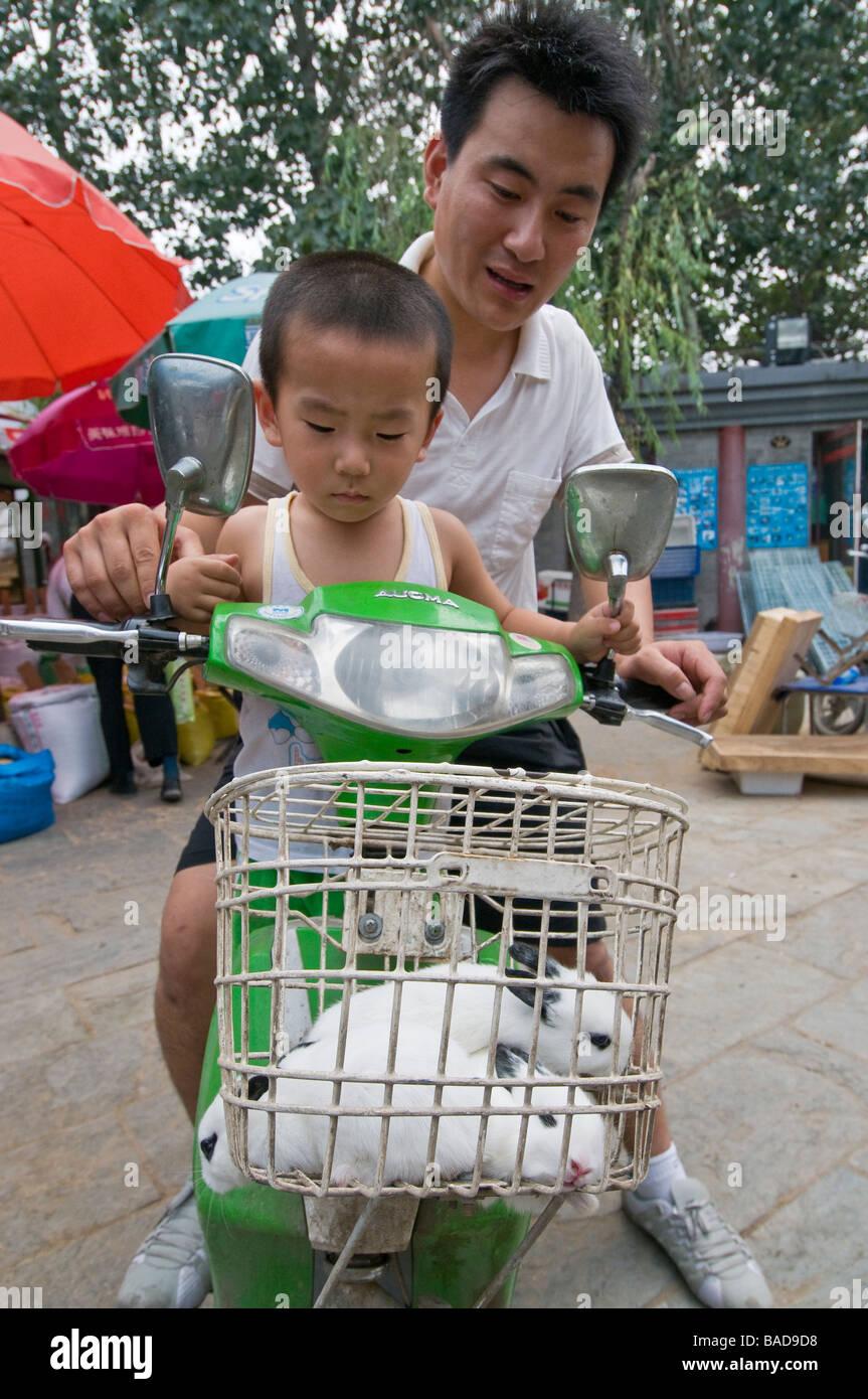 Father helps son buy pet rabbits at Shilihegiao Pet Market, Beijing, China Stock Photo