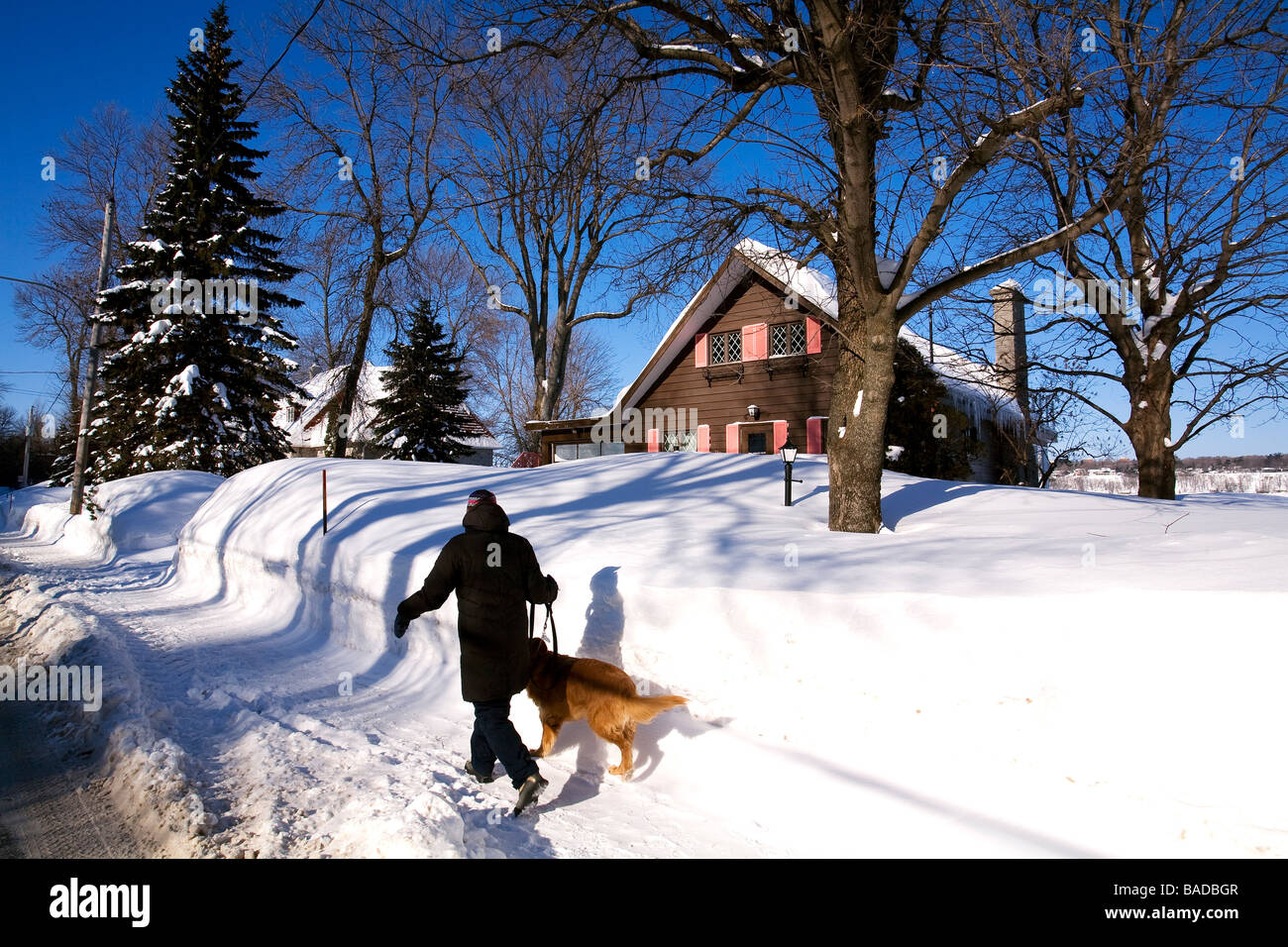 Canada, Quebec Province, Quebec City, Saint Romuald, wooden house and woman walking her dog Stock Photo