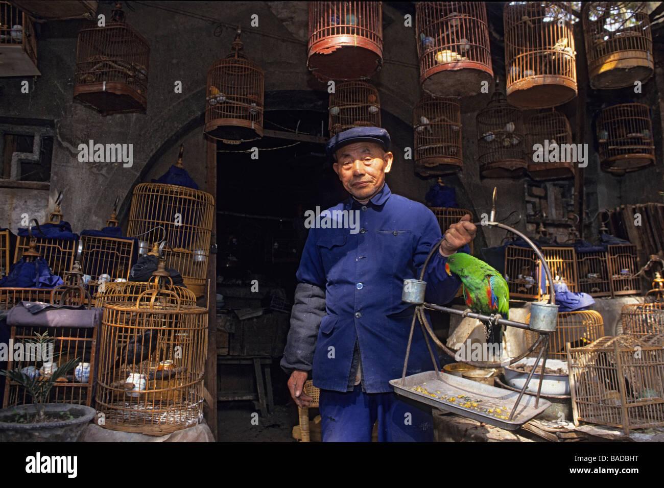 Chine, Jiangsu province, Nanjing, Confucius temple district, Birds market, salseman presenting a parrot - Stock Image