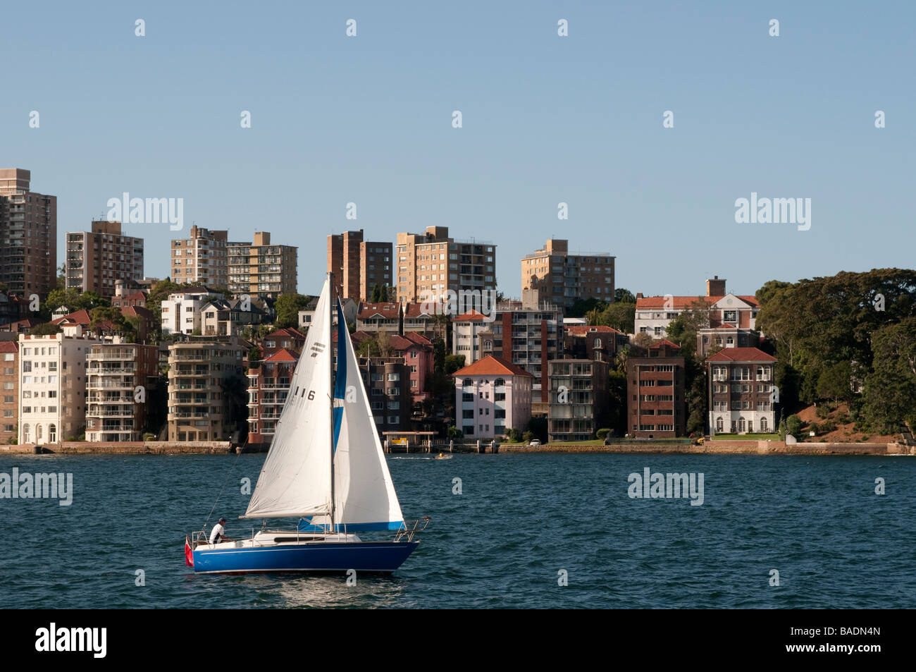 Kirribilli and Sydney Harbour New South Wales Australia - Stock Image