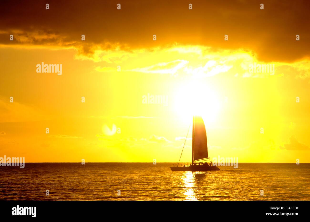A single sail catamaran sails at sunset in Barbados - Stock Image