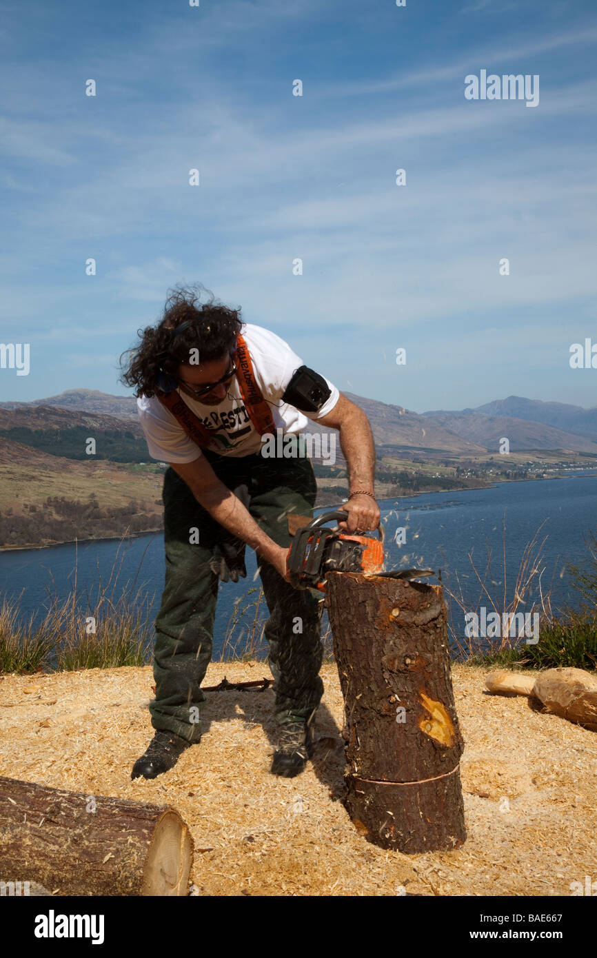 Woodcutter  Man using Husqvana Chain Saw on hill above Lochbroom, Scotland, UK Stock Photo