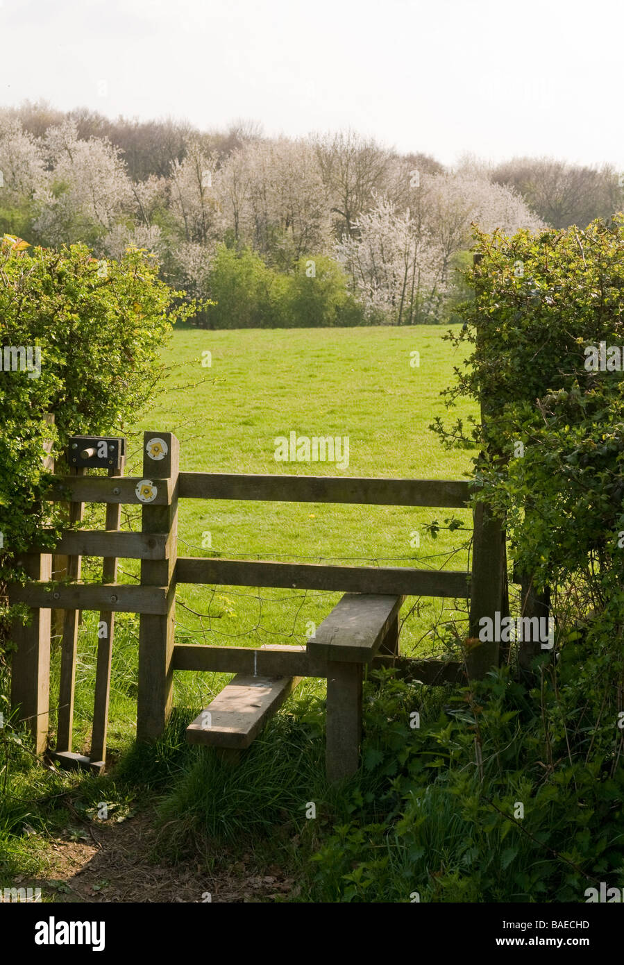 STILE ON A RURAL FOOTPATH, IN THE CHILTERN HILLS, BUCKINGHAMSHIRE, UK. - Stock Image