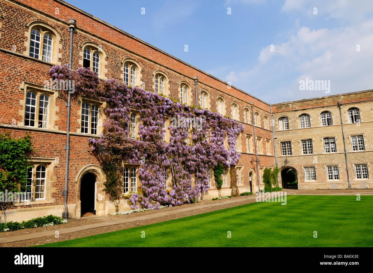 First Court at Jesus College,Cambridge, England, uk - Stock Image