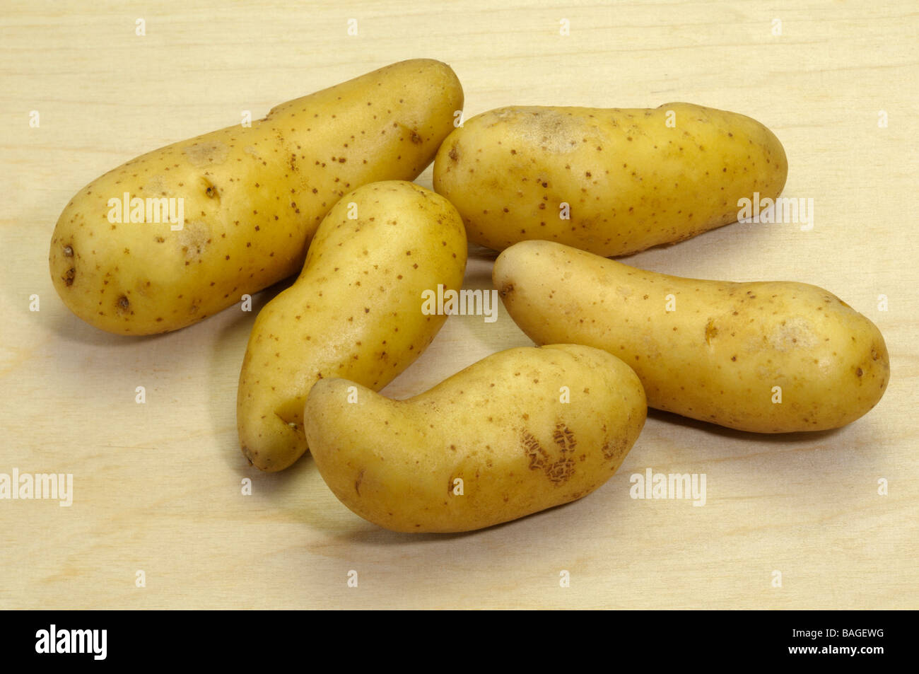 Potato (Solanum tuberosum), variety: La Ratte d Ardeche, studio picture Stock Photo