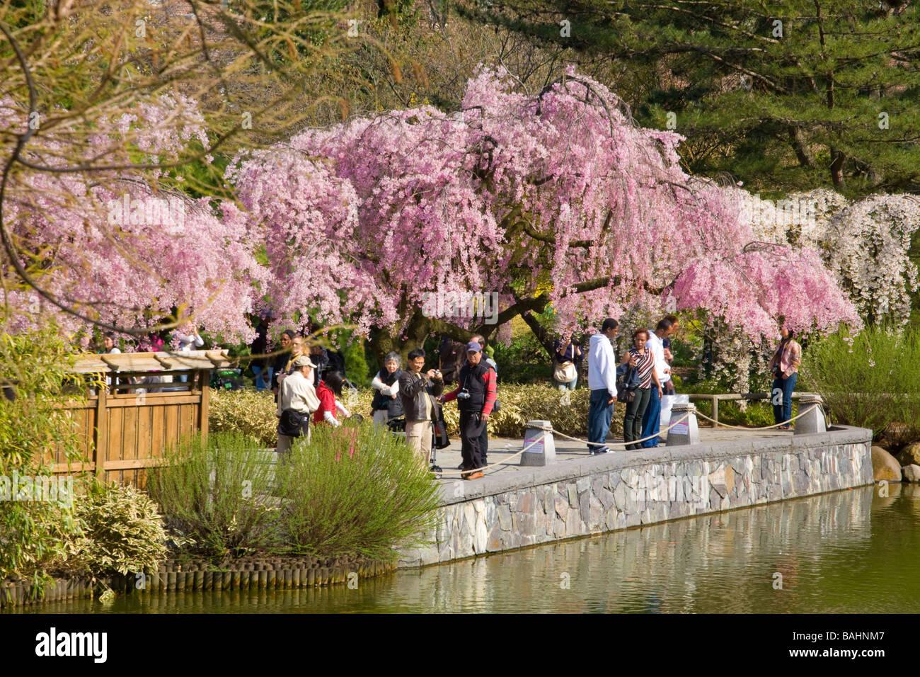 Ny Botanical Garden Stock Photos Ny Botanical Garden Stock Images