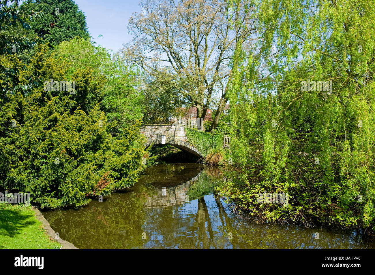 Spring Golders Hill Park Golders Green ornamental pond hump backed pedestrian bridge surrounded by trees - Stock Image
