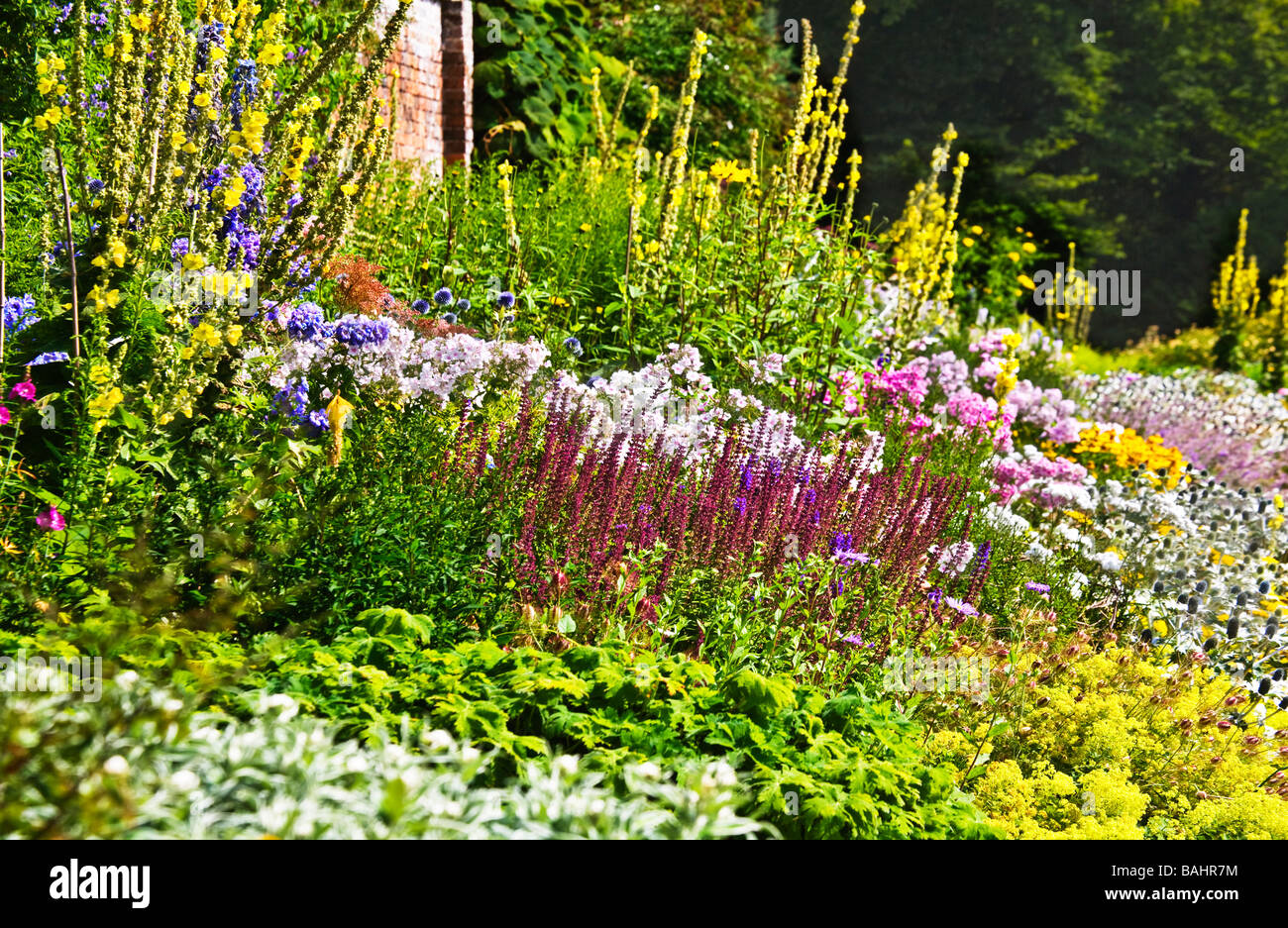 Part of the herbaceous border at Waterperry Gardens, Wheatley, Oxfordshire,Oxon, England, UK - Stock Image