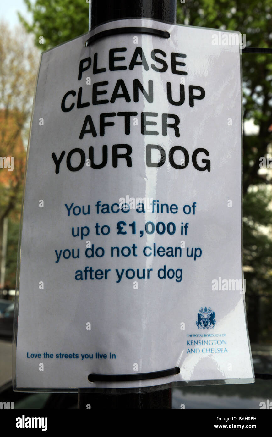 Dog fouling sign on lamp post in Royal Borough of Kensington Chelsea London - Stock Image