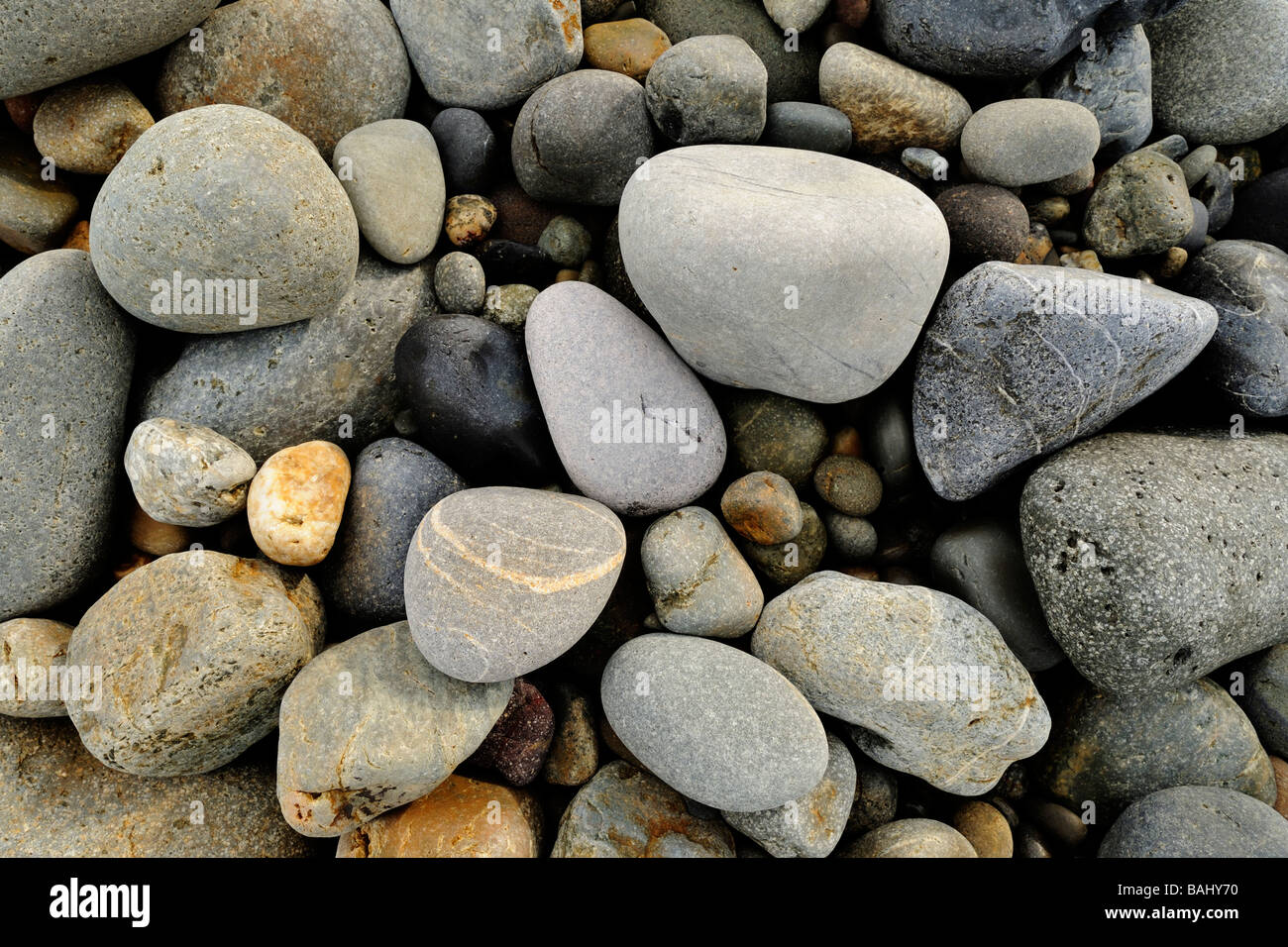 Pebbles on the beach at Newgale in Pembrokeshire Wales UK - Stock Image