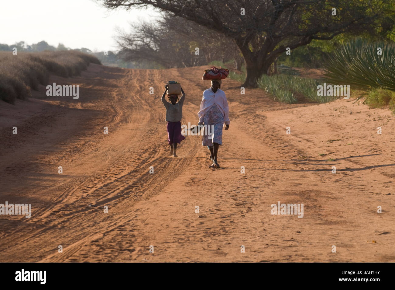 Women on their way home Berenty Private Reserve Madgascar Africa - Stock Image