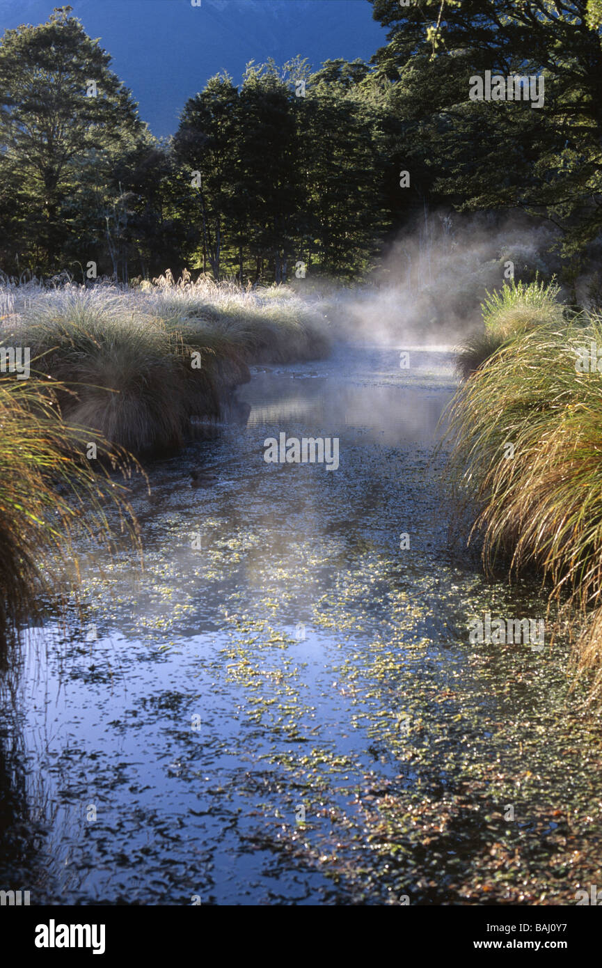 Mist hugs a body of water in St Arnaud New Zealand - Stock Image