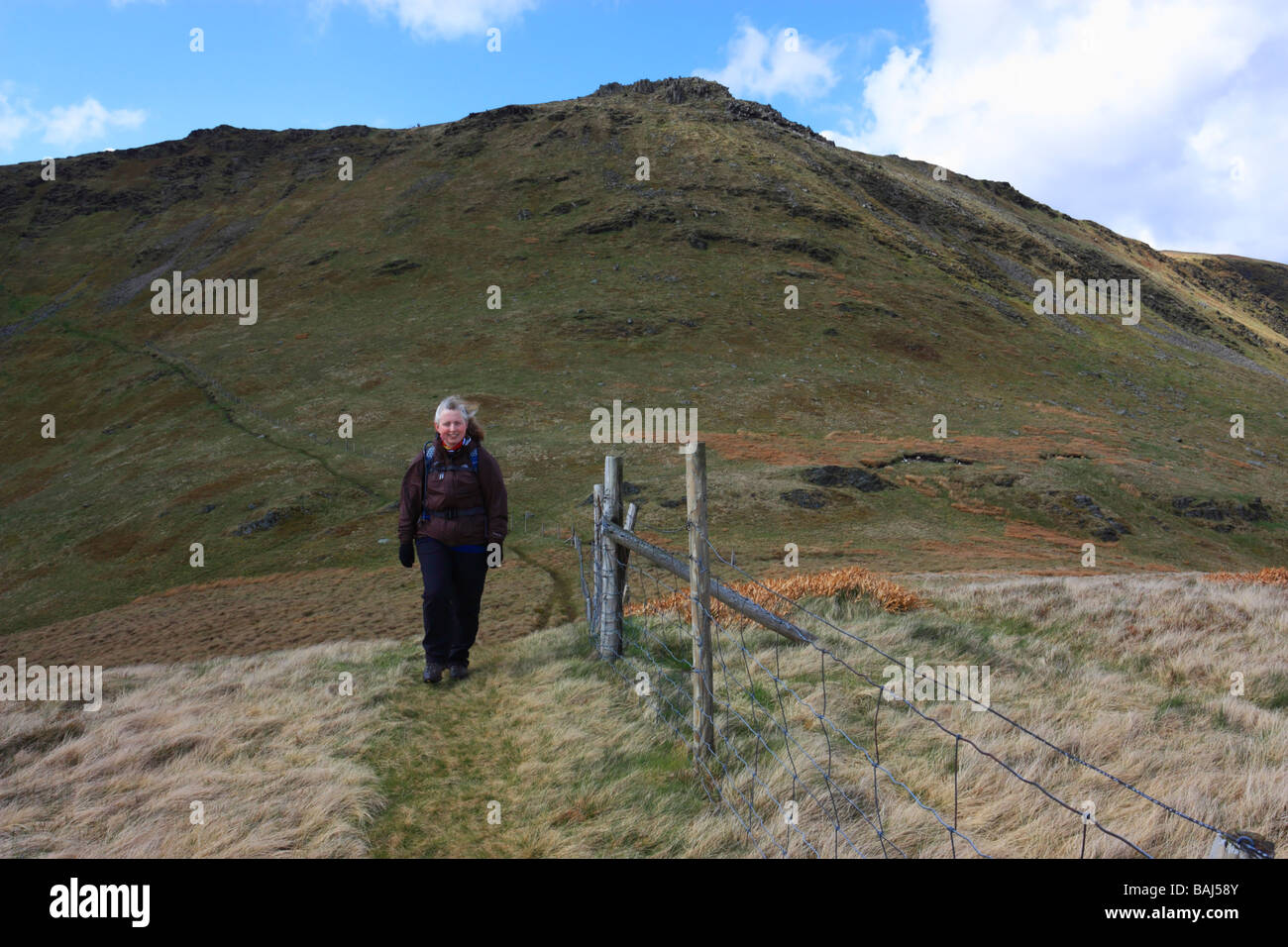A female hillwalker in the Berwyn mountains in North Wales. The summit of Cadair Berwyn provides the backdrop - Stock Image
