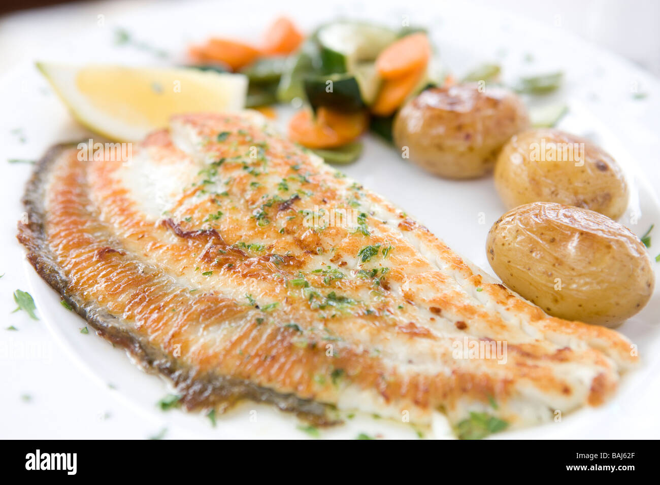 how to grill sole fish