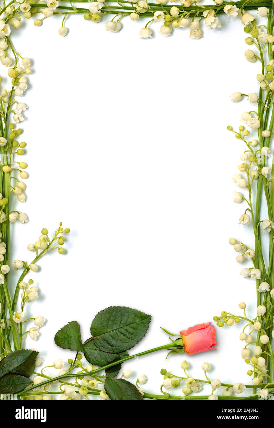 Love letter frame made from flowers Vertical conceptual background ...