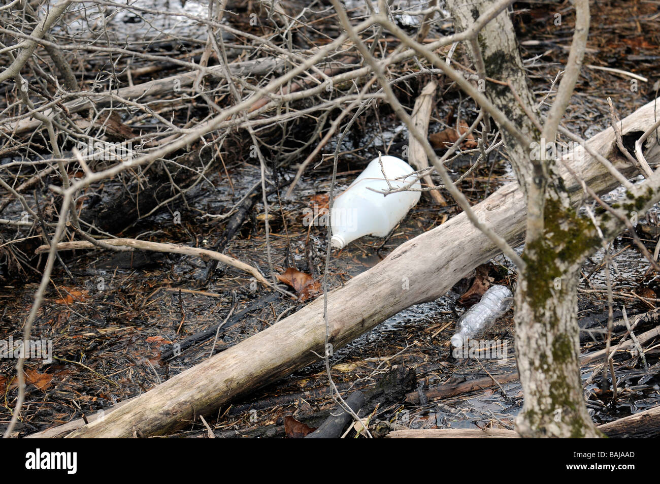 Trash and litter trapped in branch on water - Stock Image