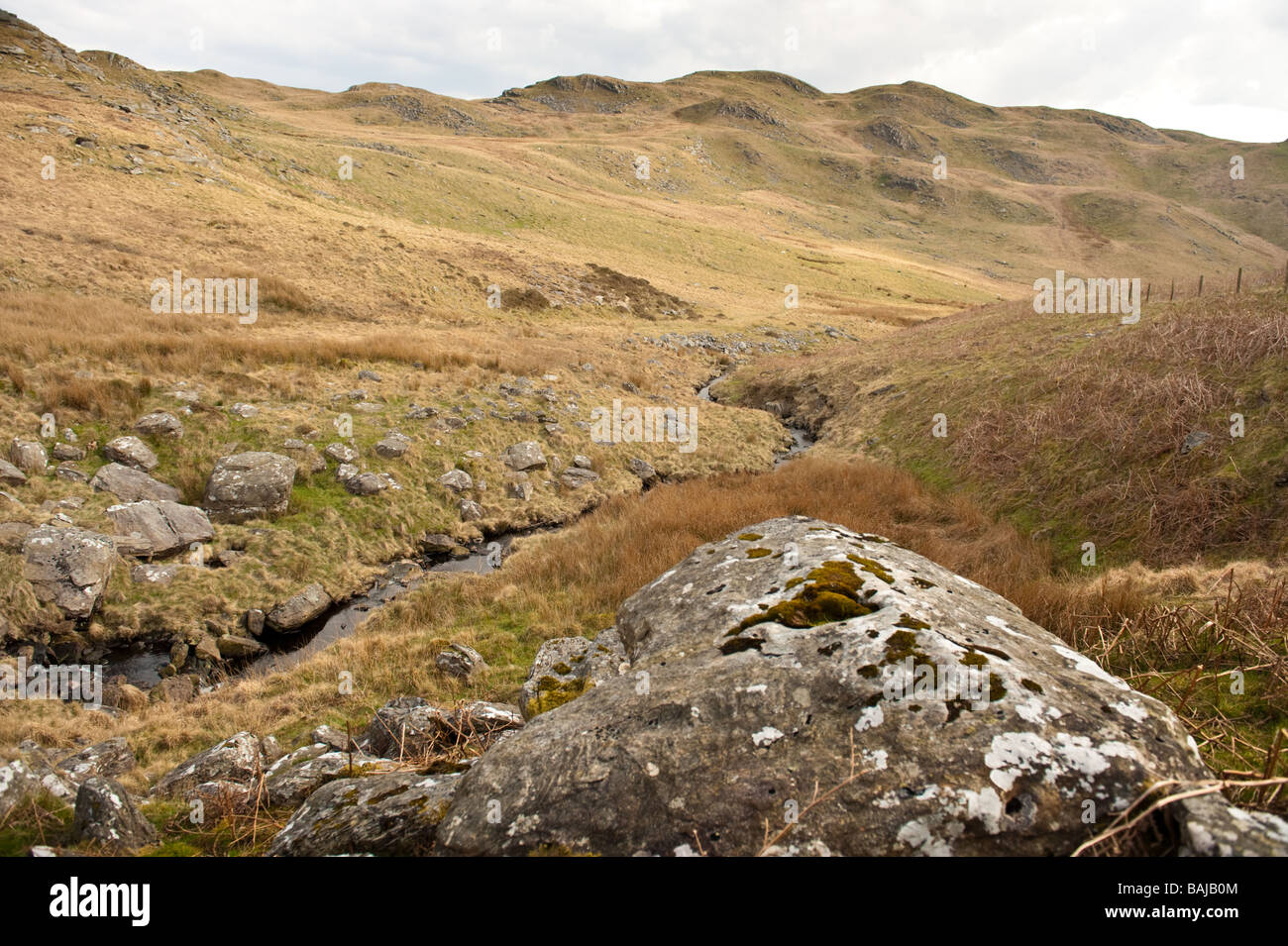 The Teifi Pools Walk path through the Upper Teifi valley rural Ceredigion Wales UK Stock Photo