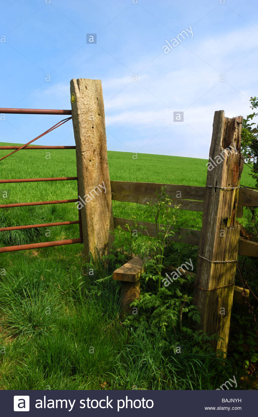 Sunny day picturesque view of a country stile, Dorset, England, UK - Stock Image
